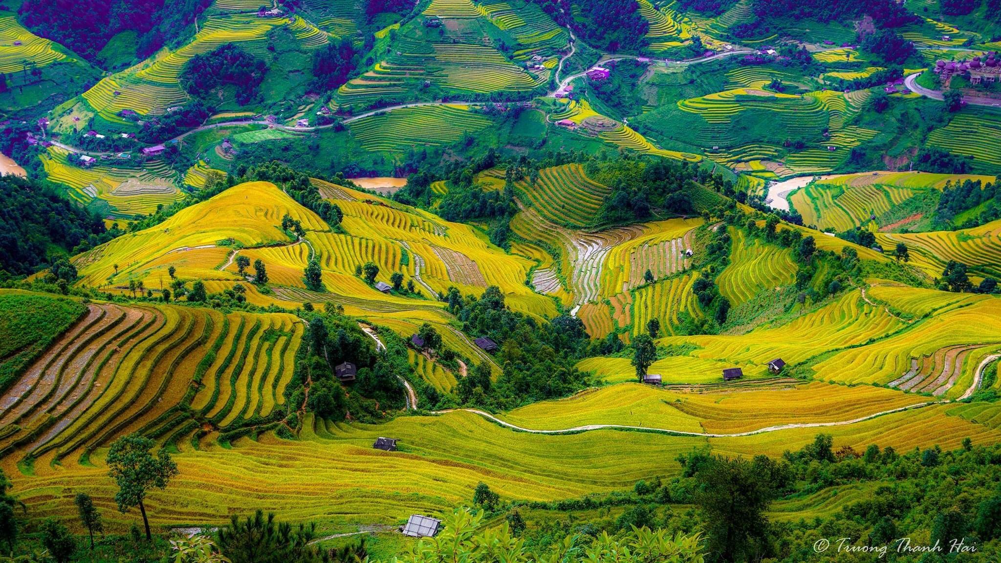 Mu Cang Chai, Yen Bai